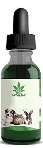 VITAL24 - 5% - Natur Tropfen für Katzen ~ 10 ML - natürliche Zutaten ohne sekundäre Inhaltsstoffe
