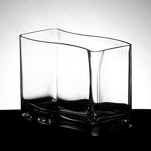 N\A AY S-förmiger Glasfischtank, Desktop-Mode Goldfischschüssel, Mini-Aquarium, Hydroponic-Glasvase...