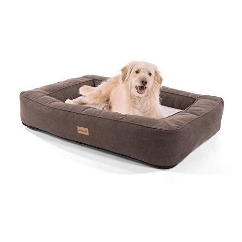 brunolie Bruno großer Hundekorb, waschbar, hygienisch und rutschfest, orthopädisches Hundebett mit...