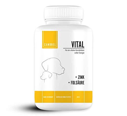 Canobel VITAL - Vitamine für Hunde - Leckerlis mit Mineralien zur Stärkung des Immunsystems - Ideal als...