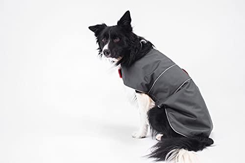 BedDog® Hundemantel mit Reflektoren, Wasserabweisende Hunde-Jacke, mit Fleece gefüttert, regulierender...