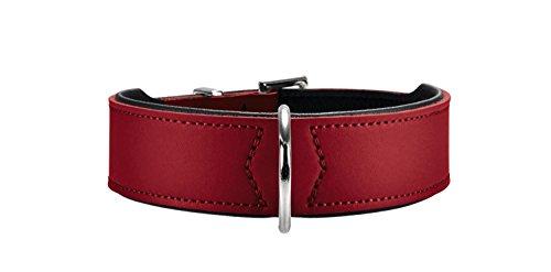 HUNTER BASIC Hundehalsband, beschichtetes Spaltleder, Kunstleder, schlicht, robust, witterungsbeständig,...