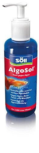 Söll 41400 AlgoSol Aquarienpflege gegen Algen im Aquarium 500 ml - hocheffektives Aquarienpflegemittel...