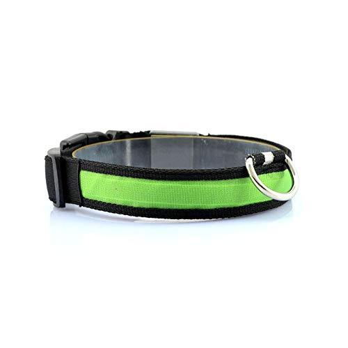 Vikenner LED Leuchthalsband Hunde Hundehalsband Batterie mit Einfach Haustier Kragen Robust Halsband für...
