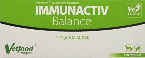 Vetfood Immunactiv Balance | Stärkung des Immunsystems von Katzen & Hunden| Bei Stress | Unterstützt...