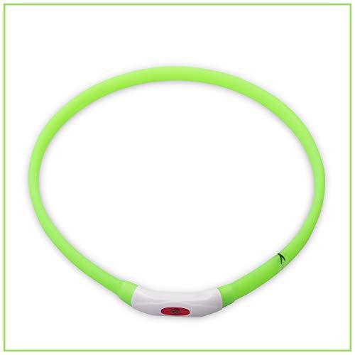 PROFTI Leuchthalsband für Hunde, USB zum Aufladen, Längenverstellbar (L, Grün)