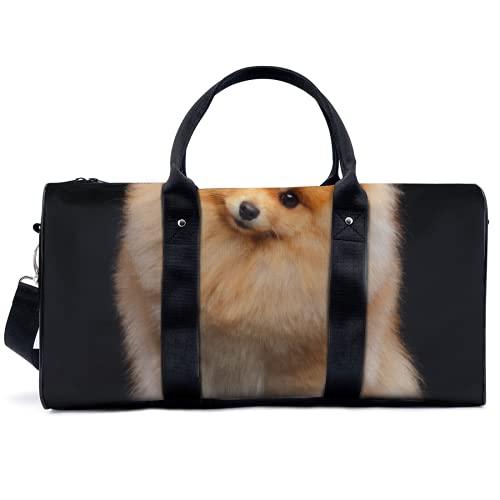 Lovely Bomi Sporttasche für Hunde, für Reisen, Yoga, Camping, große Schultertasche, leicht, Segeltuch,...