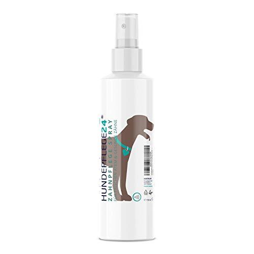 Hundepflege24 - Zahnpflege Dentalspray für Hunde & Katzen - 150ml - 100% Natürliche Zahnpflege,...