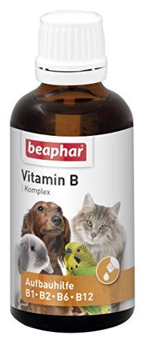 Vitamin-B-Komplex | B-Vitamine für Hunde, Katzen, Nager, Vögel | Zur Fellpflege von Haus-Tieren | Für...