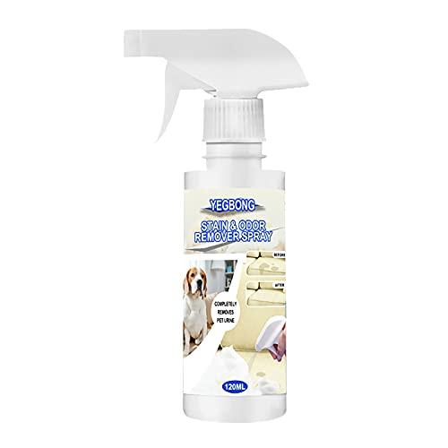 KnuraLA Pet Deodorant Schaum-Teppichreiniger Bravecto Zum Entfernen von Uringeruch Und Urinflecken Spray...