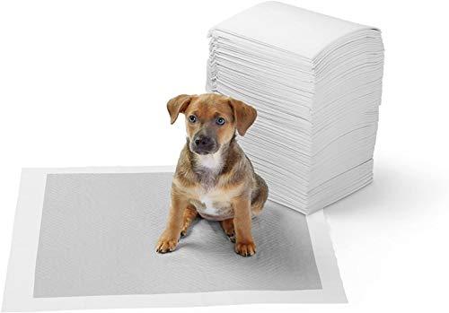 Amazon Basics - Kohlenstoff-Trainingpads für Haustiere und Welpen, Normal - 40 Stück