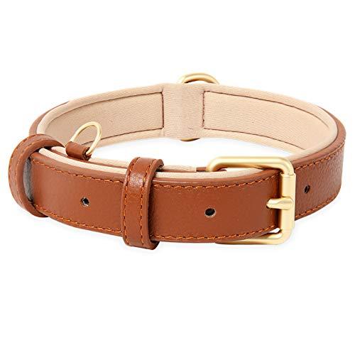 HEELE Hundehalsband, Hundehalsband mit gepolstert und echtes Leder, Verstellbar, Halsband für Große...