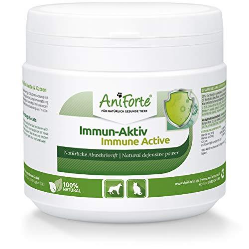 AniForte Immun Aktiv für Hunde & Katzen 250g - Kräutermischung für mehr Vitalität & Wohlbefinden,...