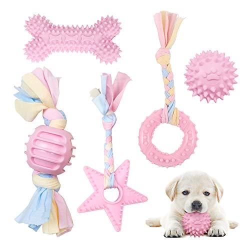 Hundespielzeug Seil mit Ball, 5 Stück Welpen Spielzeug für Hunde Zahnpflege, Kauen Hundespielzeug...