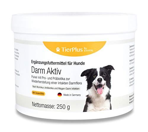 EXVital TierPlus Darm Aktiv Pulver für Hunde, Probiotika & Präbiotika für eine gesunde Darmflora- Nach...