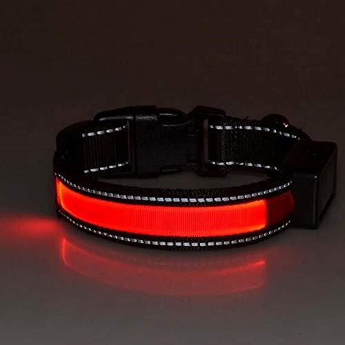 ZLDM LED Hundehalsband, Solar Hund Wiederaufladbare USB 100% Wasserdicht, Leuchtendes Halsband...