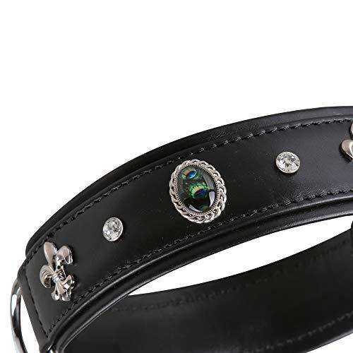 MICHUR EL Pavo Hundehalsband Leder, Lederhalsband Hund, Halsband, Schwarz, Leder, mit...