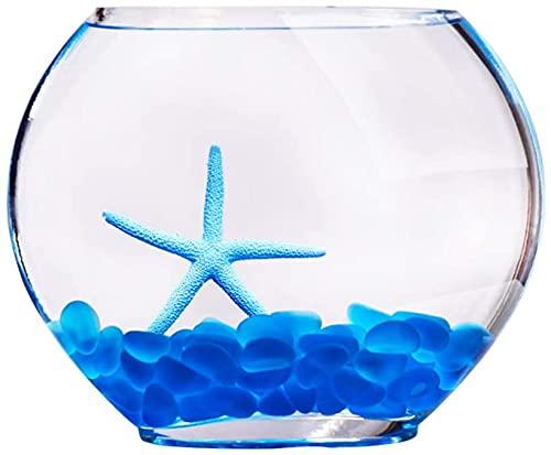 N\A AY Kleiner Fischtank, Wohnzimmer Schreibtisch Kleines Home Desktop Glas Goldfisch-Turtle-Tank...