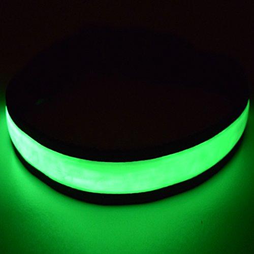 Fun Pets Hundesicherheitshalsband mit ultraheller, wiederaufladbarer LED mit hervorragender Sichtbarkeit...