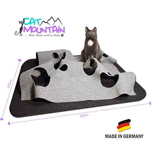 CatMountain - Katzenspielzeug und Kratzmatte - für intelligentes Spielen mit Deiner Katze