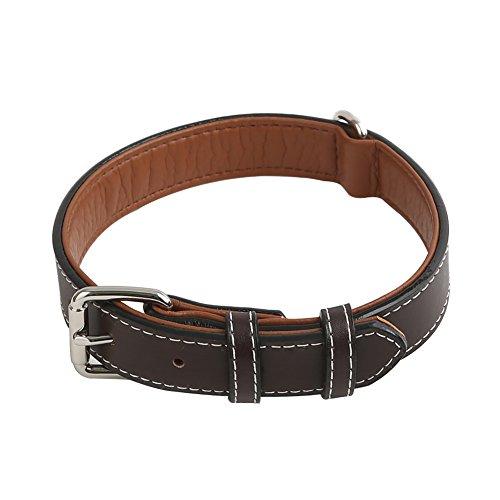 Vivifying Hundehalsband aus Leder, Verstellbar von 52 cm bis 64 cm Halsband aus Echtem Leder für Große...