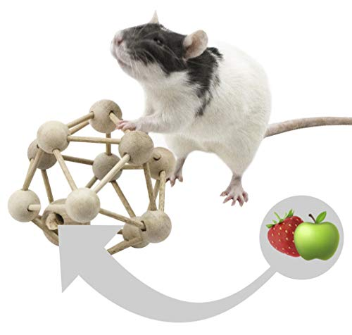 Rodents Residence Intelligenztrainer Atom für Nagetiere Kleintiere Ratte Chinchilla Frettchen Degu...