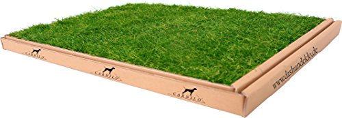 CARNILO Hundeklo aus echtem Rasen, 60 x 80 cm, Welpentoilette, Welpenklo