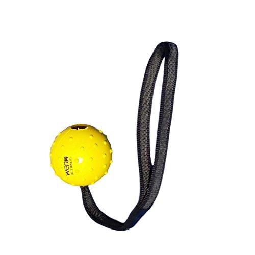 WEPO Hundespielzeug - Schleuderball mit Seil aus Naturkautschuk -für Welpen - Wurfballfür Hunde-...