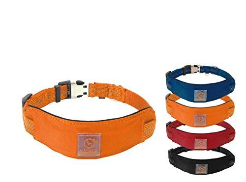 MICHUR Bruno HUNDEHALSBAND Orange, Nylon Hundehalsband, Halsband für Hunde, Neon Orange, Neopren...