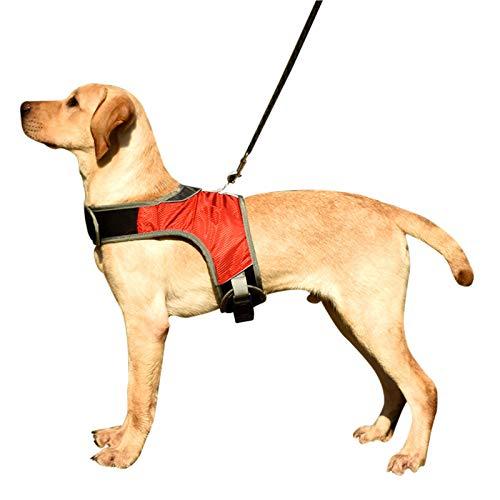 Bestomrogh Hundegeschirr, neue Generation, verstellbar, reflektierendes Welpengeschirr mit LED-Licht,...