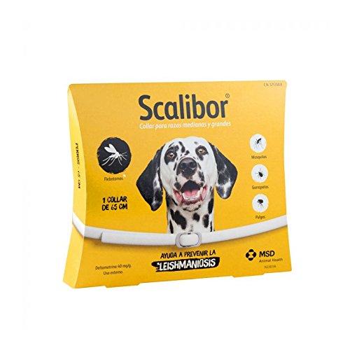 Scalibor – Zecken Halsband für große Hunde (1 Halsband 65 cm)
