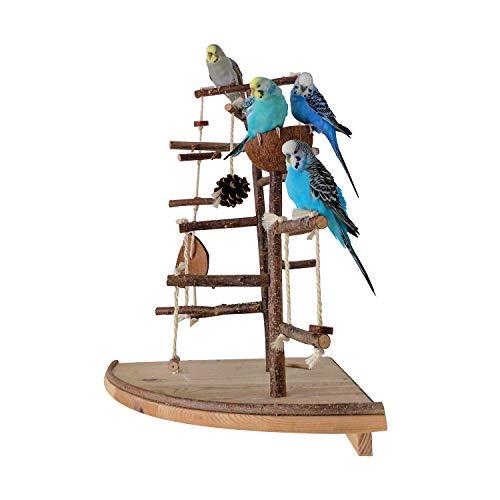 Vogelgaleria Premium Vogelspielplatz groß für die Wand-Montage | 2 abnehmbare Natur Kletterbäume aus...