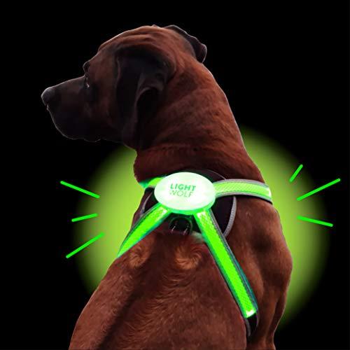 LED Hundegeschirr USB aufladbar mit 4 Farben | LED Hundeweste Leuchtend + reflektierend | Neues Modell...