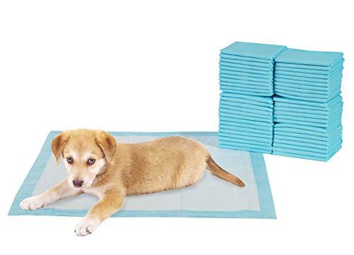 TERRA SELL Premium Hunde-Toilette - 50er Set Hygiene Unterlagen für Haustiere - Saugstarkes Hundeklo -...