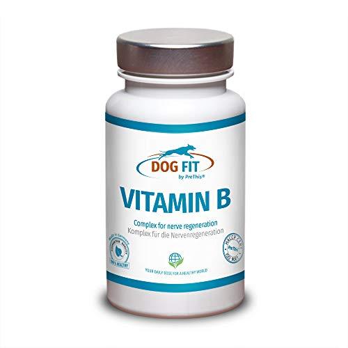 DOG FIT by PreThis® Vitamin B Komplex für Hunde | Nervensystem, Inkontinenz, Spondylose, Demenz &...