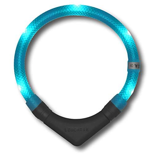 LEUCHTIE® Leuchthalsband Plus türkis Größe 40 I LED Halsband für Hunde I 100 h Leuchtdauer I...