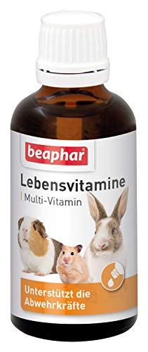 beaphar Lebensvitamine für Nager | Vitamintropfen für Kleintiere | Mit B Vitaminen, Vitamin C, E und K...