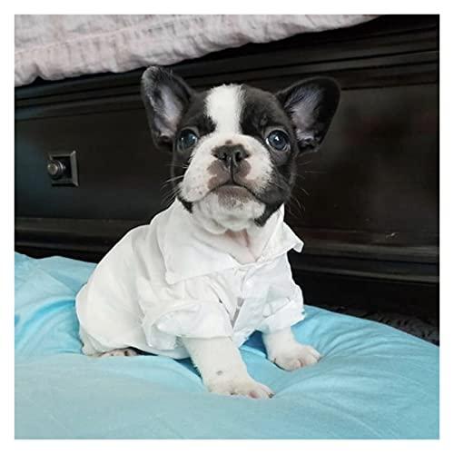 SDLSH Hundebekleidung für Haustiere Haustierhundhemd, Frühling Sommerkleidung für kleine mittelgroße...