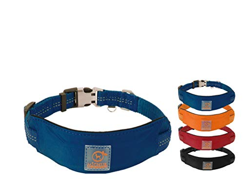 MICHUR Bruno HUNDEHALSBAND blau, Nylon Hundehalsband, Halsband für Hunde, Neon Blau, Neopren Polsterung,...