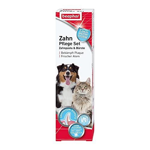 beaphar Zahnpflege Set | Zahnpasta & Zahnbürste | Für große und kleine Hunde | Für Katzen | Ohne...