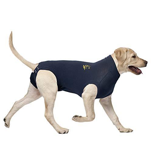 MPS Medical Pet Shirt, Hund, Blau, für XX-kleine Hunde