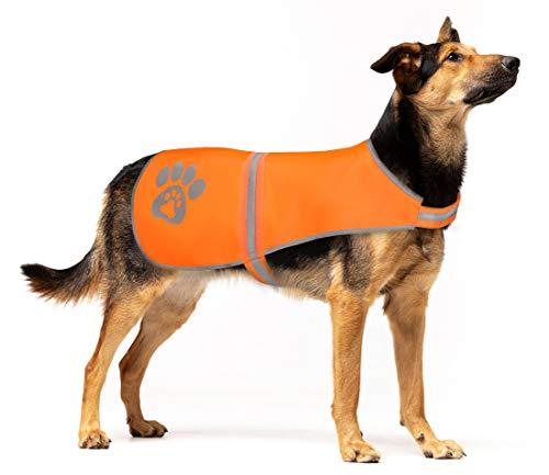 SPOFLY Blaze Orange Jagdweste Sicherheitsweste für kleine, mittelgroße und große Hunde mit...