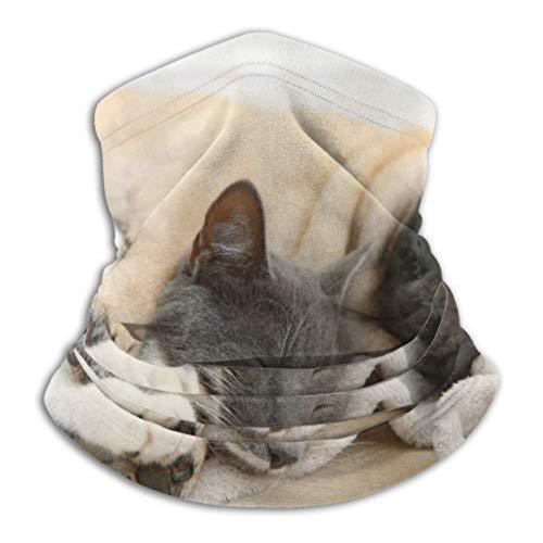 Teemoo Fleece-Nackenwärmer, multifunktionaler niedlicher Mops-Katzen-Liegeschal, Vollmaske oder Hut,...