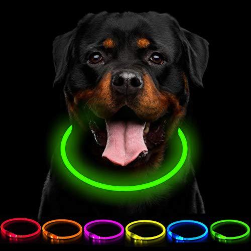 CCWW LED Leuchthalsband Hunde Halsband USB wiederaufladbar - Längenverstellbarer Haustier Sicherheit...