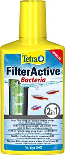 Tetra FilterActive Bacteria - 2in1 Mix aus lebenden Starterbakterien und schlammreduzierenden...