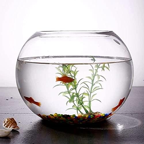 N\A AY Aque-Tank, Glas kreativer runder Fisch-Tank, Wohnzimmer kleine Goldfischschüssel, Büro-Desktop...