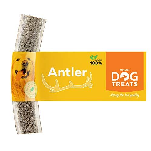 Geweih Kausnack für Hunde 100% Natürlich Hirschgeweih Kauspielzeug Kauknochen Hundeknochen, Größe...