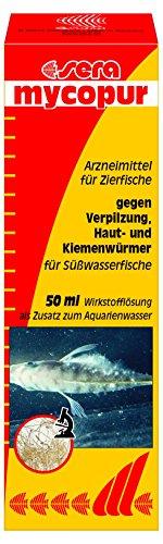 sera mycopur 50 ml - Arzneimittel für Fische gegen Verpilzungen (Mykosen), Medizin fürs Aquarium