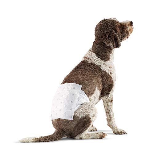 Amazon Basics - Hundewickel für Rüden, Große, 30er-Pack