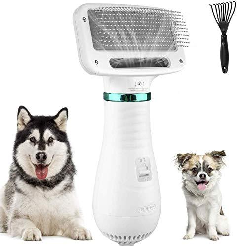 kupet 2 in 1 Hundetrockner für Hund, 300W geräuscharm Einstellbare Temperatur Hundefön Hundetrockner...